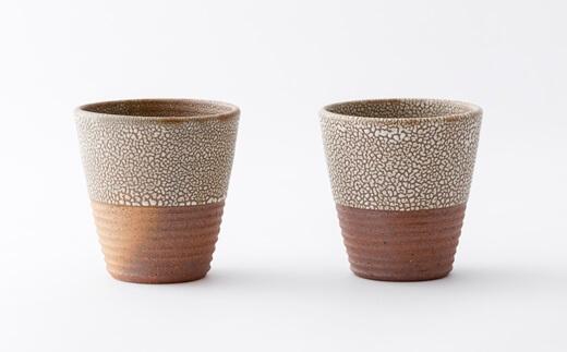 Takeo-yaki, Takeo porcelain