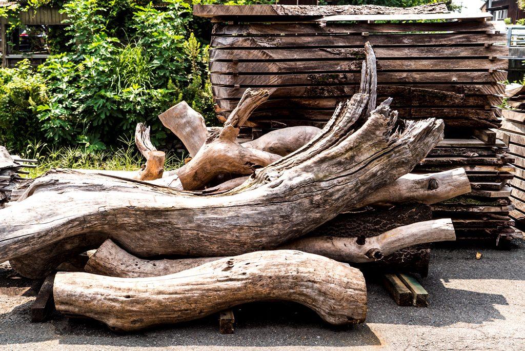 波打った木目やコブがある楠の木