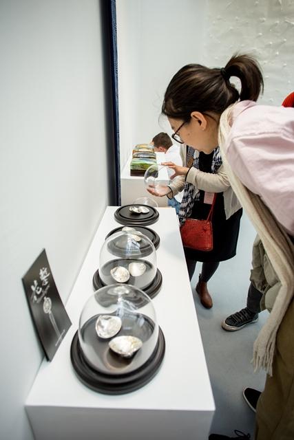 ドーム型のガラスケースに入れて展示された蛤合子。展示の方法次第で、大切なものというイメージ伝わる